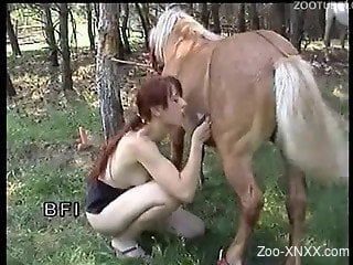 Redhead sucking a horse cock outdoors, in a forest