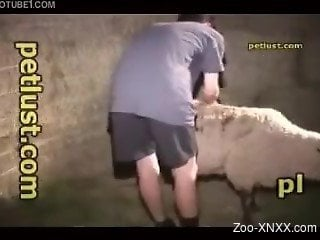 Skinny-ass dude fucking that tight sheep pussy