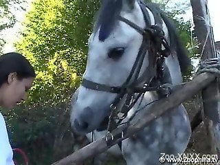 Horse destroying this brunette's yearning holes