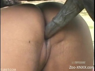 Twisted brunette Latina getting fucked by a black dog