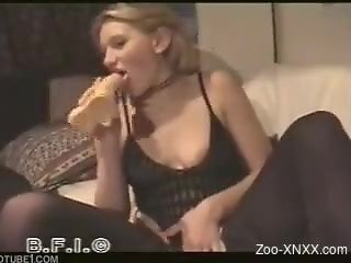 Stockings-wearing blonde sucking dog's meaty cock