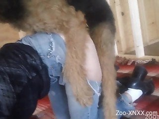 Ripped jeans shaggy dog gets banged from behind