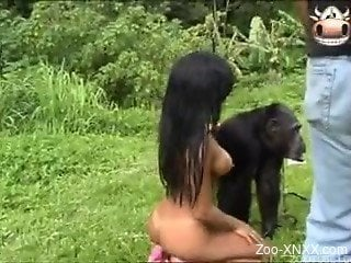 Gorilla almost seducing two naked chicks outdoors