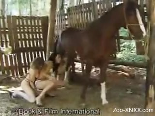Two girlfriends getting banged by a hung horse