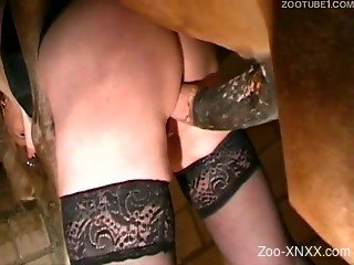 Black stockings slut gets fucked by a big horse cock