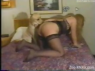 Blonde in black lingerie gets pounded by a fat dog