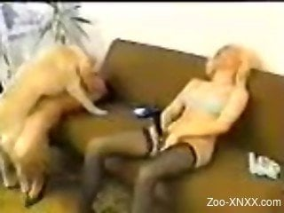 Blonde in stockings fucking a hung dog with her GF