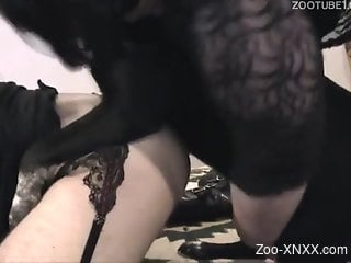 Black get-up and red fishnets brunette gets fucked raw