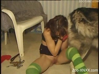 Redhead in striped stockings sucking a dog's cock