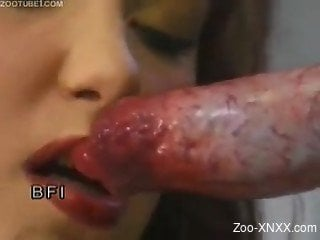 Curly-haired babe riding this dog's meaty cock
