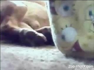 Amateur zoophile spotted having sex with her dog