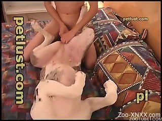 Perfect white dog is getting anally fucked by zoophile