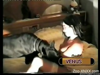 Dark-haired beauty enjoys brutal dog zoophilia XXX
