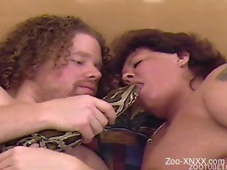 Exotic animality XXX with a family couple and a massive python