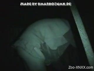 zoo-animal-porno Videos / Zoo XNXX