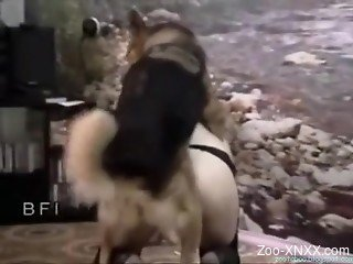 Trained doggy fucks a slender brunette in black stockings