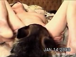 Blindfolded beauty gets her pussy licked by a dog