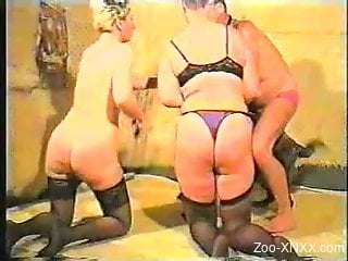 Stockings-clad blonde fucks a dog in a threesome