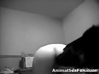 B&W bestiality seduction video with a horny blonde