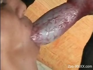Doggy style fucking with a kinky-looking Latina hoe