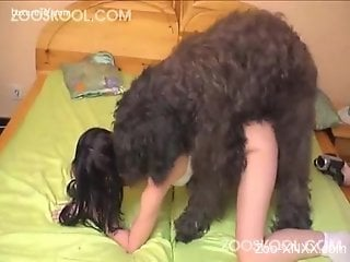 Shaggy dog fucking a brunette babe on all fours