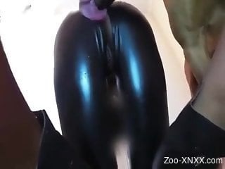 Catsuit beauty gets fucked by a really kinky dog