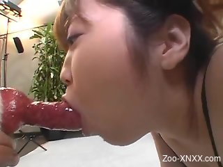 Pregnant Japanese babe getting fucked on all fours