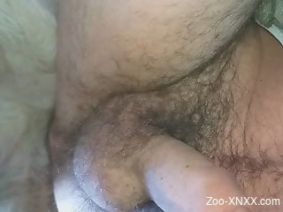 Hairy butthole dude getting fucked by a sexy dog