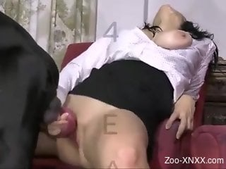 Barely legal dog fucking this brunette's pussy